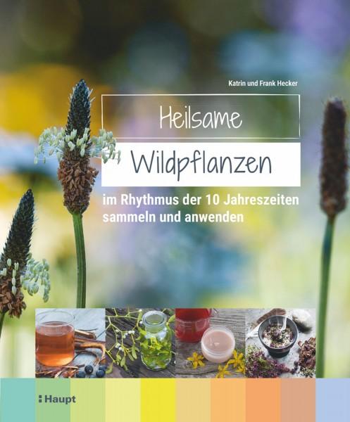 Heilsame Wildpflanzen: im Rhythmus der 10 Jahreszeiten sammeln und anwenden, Haupt Verlag, Autoren K. und F. Hecker