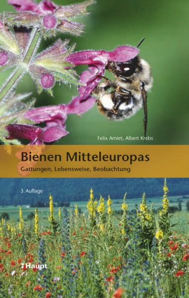 Bienen Mitteleuropas: Gattungen, Lebensweise, Beobachtung. Alle 40 Großgattungen der Wildbienen und rund 170 Arten im Porträt, Haupt Verlag, Autoren F. Amiet, A. Krebs