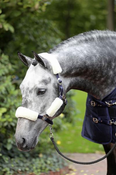 Webpelz-Set für Pferdehalfter aus Kunstpelz zur weichen Abpolsterung des Halfters