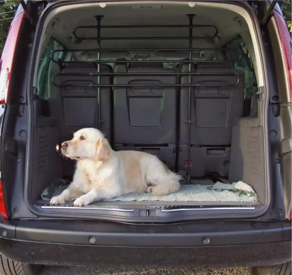 Auto-Schutzgitter zur sicheren Abteilung des Kofferraums