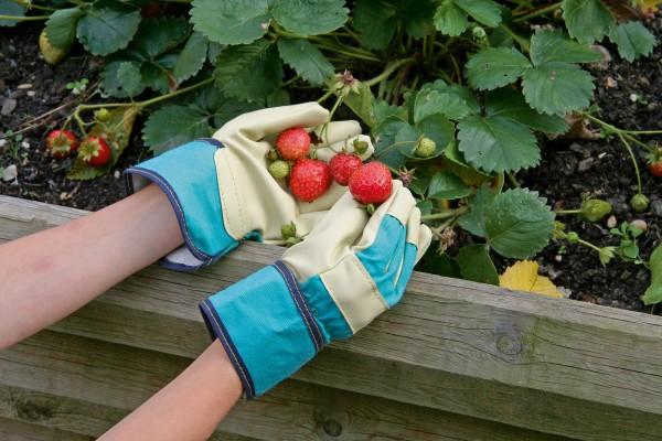 Ideal für alle Arbeiten im Garten, Arbeitshandschuh in der Farbe grün für kleine Kinderhände