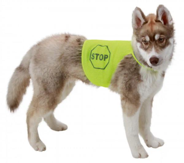 Sicherheitsweste für Hunde, neon farbig, für mehr Sicherheit für Ihren Hunds