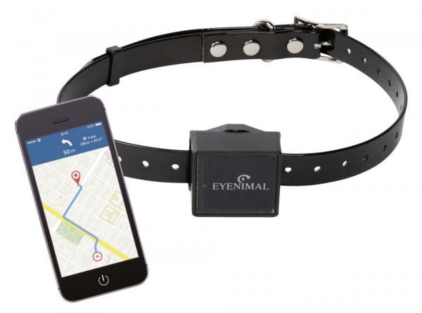 IOPP Tracker GPS-Ortungshalsband, Aktivitätsüberwachung liefert Ihnen Informationen zur täglichen Wegstrecke Ihres Tieres