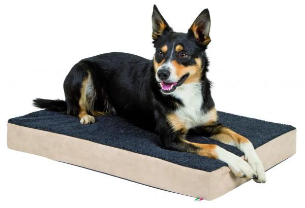 Memory-Foam Matratze Gesundheitsmatratze für große Hunde