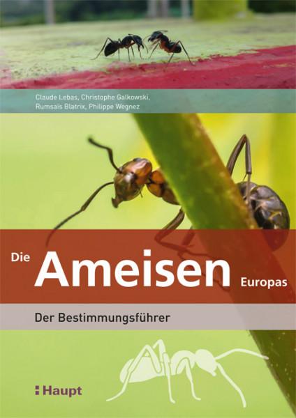 Die Ameisen Europas - Der Bestimmungsführer, Haupt Verlag, Autoren C. Lenas et al.