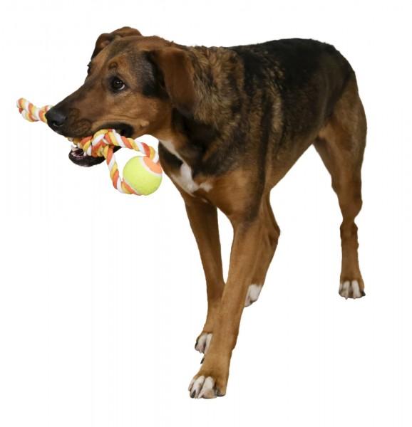 Ball am Tau, robustes Hundespielzeug für Ziehspiele mit Ihrem Hund, 3 Stück