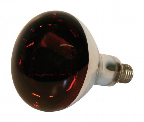 Hartglas Infrarotlampe von kerbl, Stallwärmelampe in rot, spritzwasserfest