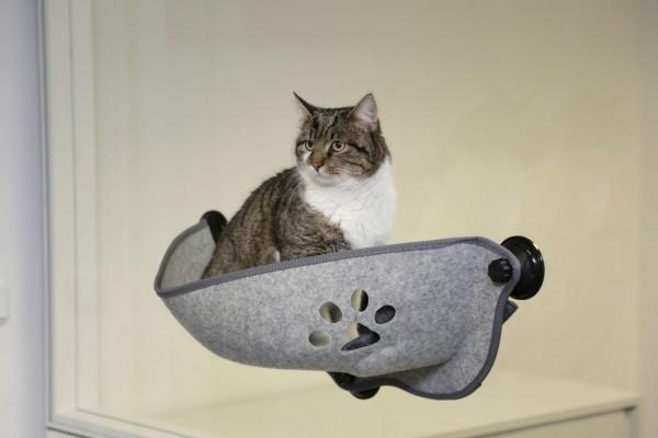 Fensterliegebett aus Filz, bietet Ihrer Katze einen schönen Ausblick