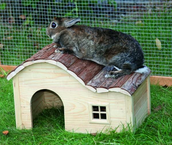 Haus aus Naturholz mit hübscher Rindenverkleidung auf dem Dach