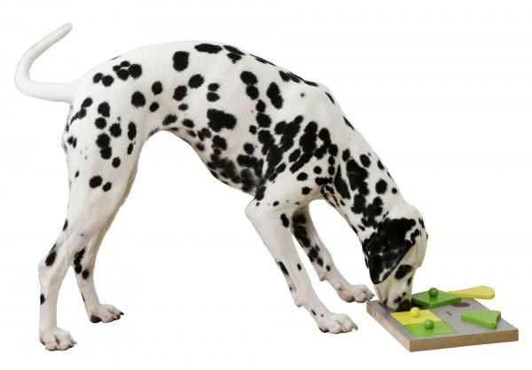 Denkspielzeug Cake bietet Ihrem Hund die Möglichkeit sich zu beschäftigen