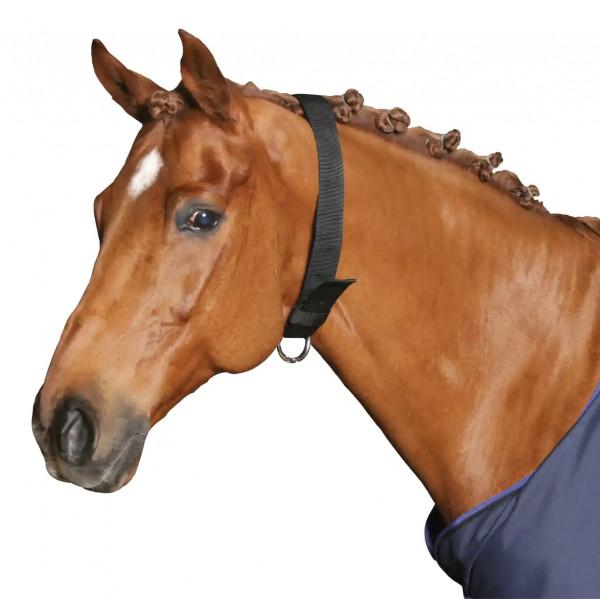 Halsriemen für Pferde, 5 cm breit, aus stabilem Polyamid