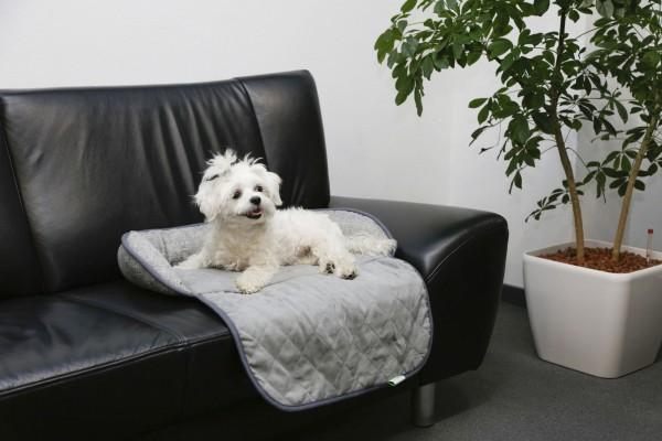 Couchkissen Emalia, kuscheliger Liegeplatz für Haustiere, Farbe grau