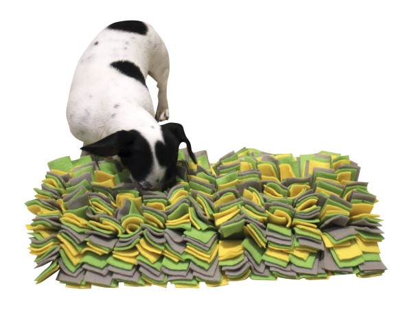 Schnüffelteppich als perfektes Such- und Schnüffelspiel zur langfristigen Beschäftigung