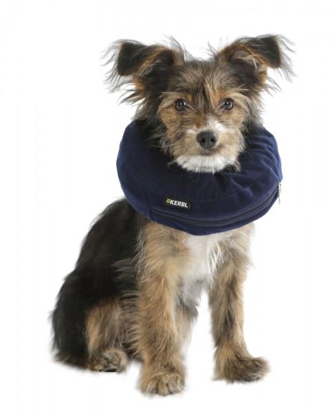 Aufblasbare Hunde-Halskrause in blau, mit hohem Tragekomfort