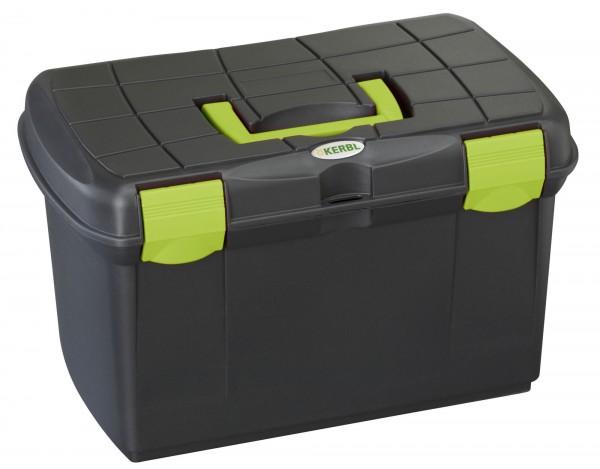 Putzbox mit herausnehmbarem Einsatz, Deckel mit 2 stabilen Verschlussklappen, schwarz/pistazie