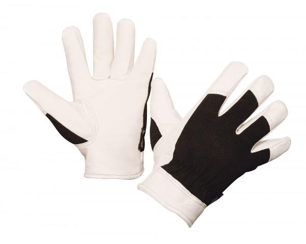 Handschuh Graphix, weich gegerbter Lederhandschuh, abriebfest und geschmeidig