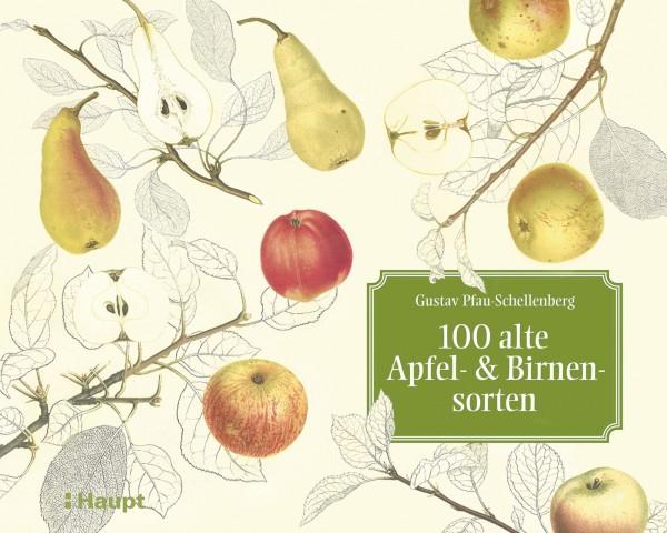 """100 alte Apfel- und Birnensorten: Das Meisterwerk """"Schweizerische Obstsorten"""", Haupt Verlag, Autoren G. Pfau-Schellenberg, L. Lienhard"""