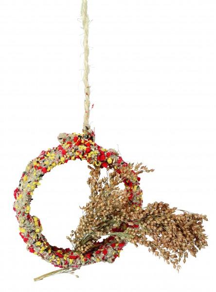 Native Snacks aus Rispenhirse ohne Zucker oder künstliche Zusätze, 3 Stück