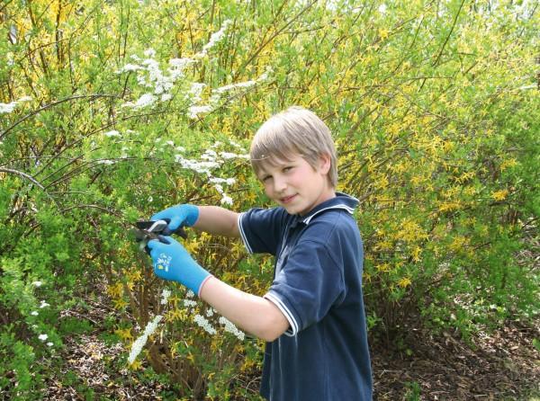 Gartenhandschuh für Kinder, Farbe marineblau, nahtloser Feinstrickhandschuh (13 Gauge) mit Naturlatexbeschichtung