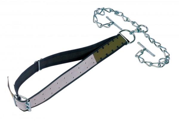 Starke Anbindung für Bullen mit verzinktem Kettenteil, Wirbel und Knebel