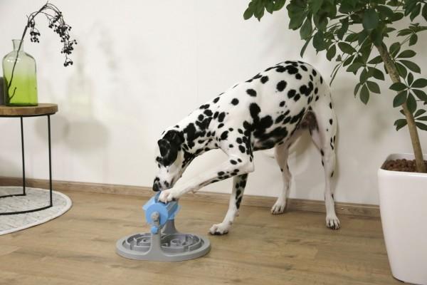 Snackrolle, fördert die körperliche und geistige Aktivität Ihres Hundes