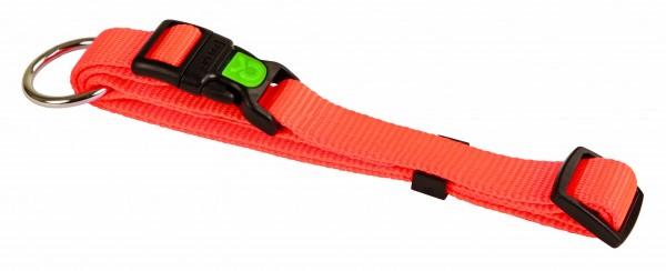 Halsband aus Nylongewebe in knalligen Farben mit robusten Beschlägen