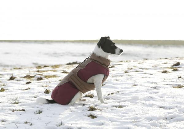 Hundemantel im royalen Old-English-Design für nasskalte Wintertage, in 5 Größen