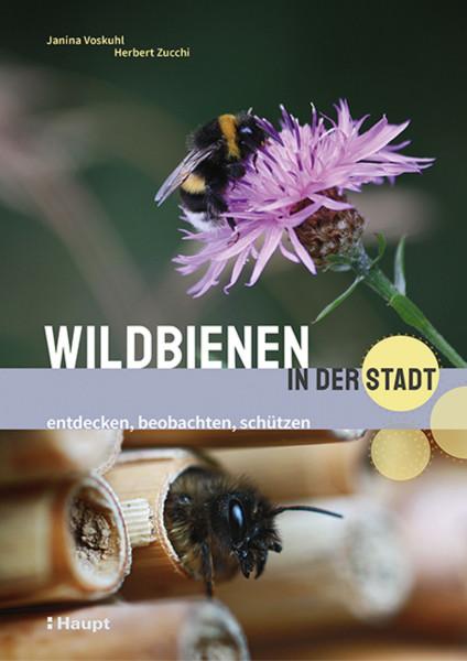 Wildbienen in der Stadt - entdecken, beobachten, schützen, ein Buch aus dem Haupt Verlag, Autor J. Voskuhl, H. Zucchi