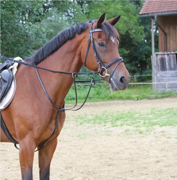 Martingal aus Leder zur Verhinderung des Kopfschlagens bei Pferden, mit Martingalstopper