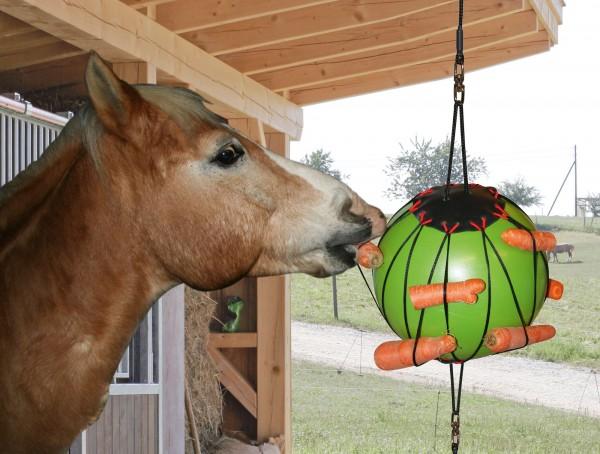 Therapie-Spielball bestückbar mit verschiedenen Leckereien und ist ein optimaler Zeitvertreib für Ihr Pferd