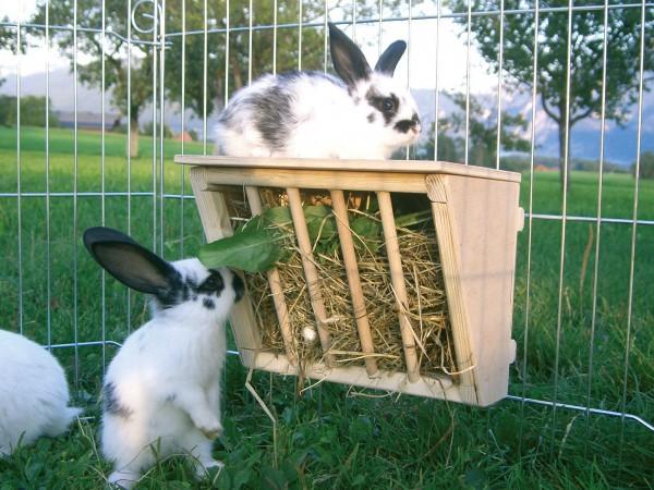 Heuraufe aus Vollholz für Kaninchen und andere Nager, Futterraufe mit Sitzbrett für Kleintiere