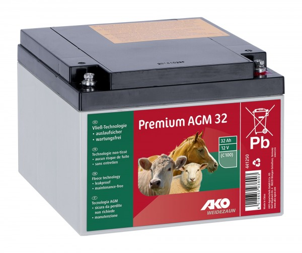 Premium AGM Batterie 12 Volt, 32 Ah, Vließbatterie auslaufsicher, wartungsfrei, extrem zyklusfest