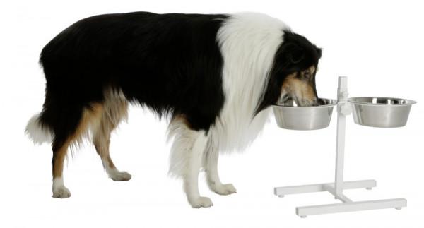 Futterbar weiß, in 2 Größen, besonders für große Hunderassen geeignet
