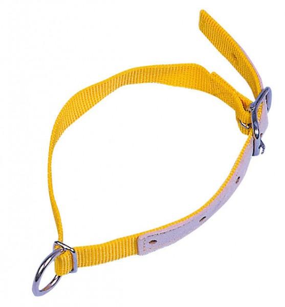 Halsriemen für Schafe, lederverstärkter Halsgurt mit D-Ring, Farbe gelb