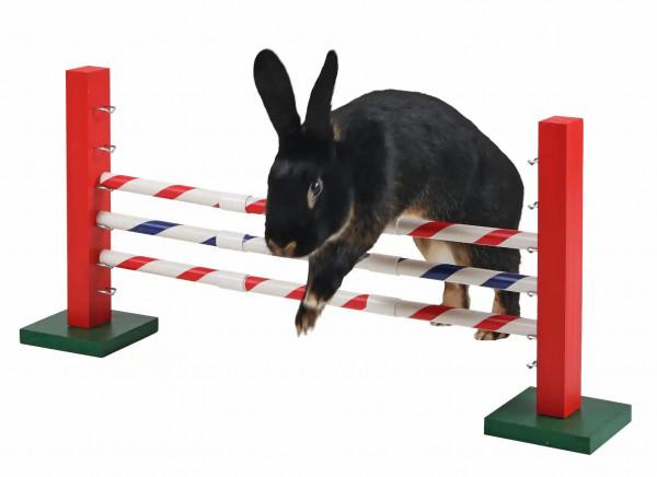 Agility Für Kaninchen, Sprunghöhe je nach Größe und Fitness der Tiere einstellbar