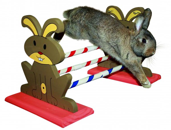 Agility für Kaninchen und Co., variabel aufstellbar