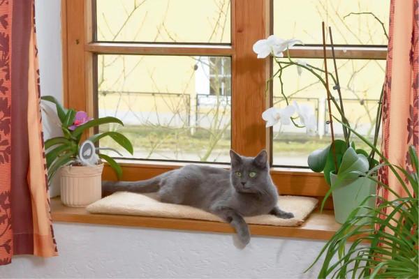 Fensterliegekissen, selbstwärmende Liegefläche, reflektiert die Körperwärme der Katze