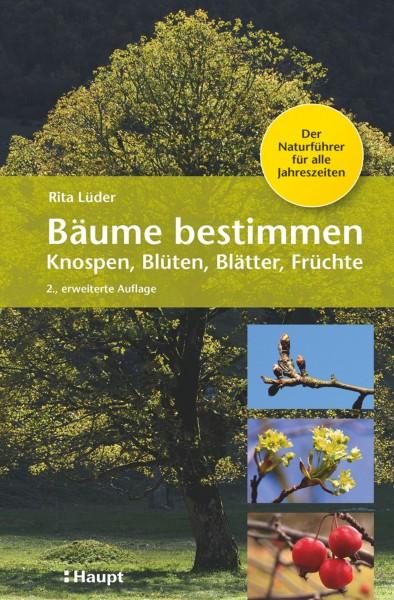 Bäume bestimmen: Knospen, Blüten, Blätter, Früchte, der Naturführer für alle Jahreszeiten, Haupt Verlag, Autor R. Lüder