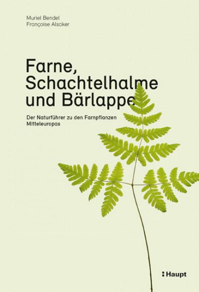 Farne, Schachtelhalme und Bärlappe - Der Naturführer zu den Farnpflanzen Mitteleuropas, Haupt Verlag