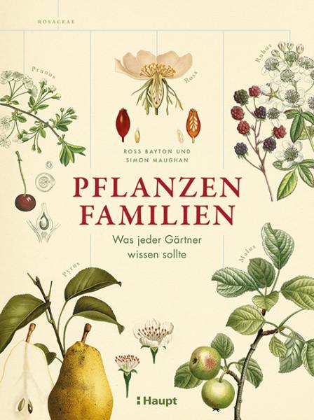 Pflanzenfamilien - Was jeder Gärtner wissen sollte, Haupt Verlag, Autoren R. Bayton, S. Maughan